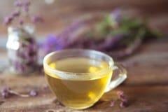 Зеленый чай с herbals Чай с душицей на деревянном backgroun Стоковое Фото