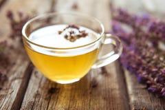 Зеленый чай с herbals Чай с душицей на деревянном backgroun Стоковое Изображение RF
