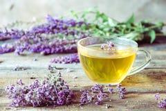 Зеленый чай с herbals Чай с душицей на деревянном backgroun Стоковые Изображения RF
