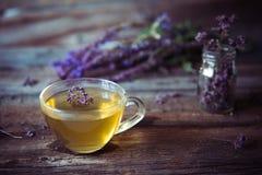 Зеленый чай с herbals Чай с душицей на деревянном backgroun Стоковая Фотография