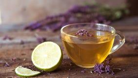 Зеленый чай с herbals и известкой Чай с душицей на деревянном Стоковые Фотографии RF