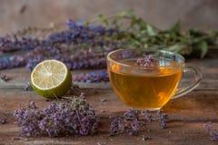 Зеленый чай с herbals и известкой Чай с душицей на деревянном Стоковые Изображения
