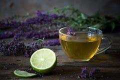Зеленый чай с herbals и известкой Чай с душицей на деревянном Стоковые Фото