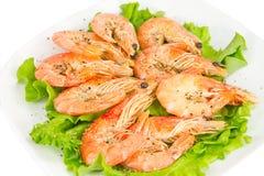 зеленый шримс салата плиты Стоковое Фото