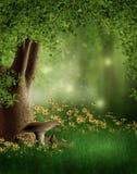 Зеленый glade с цветками Стоковое Изображение RF