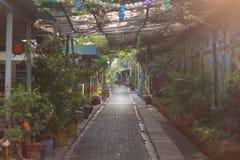 Зеленый kampong стоковое изображение rf