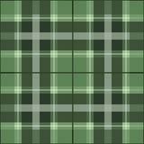 зеленый scottish картины Стоковые Фото