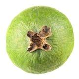 Зеленый unpeeled плодоовощ feijoa изолированный на белизне Стоковое Изображение