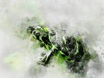 Зеленый watercolour черепахи акварели стоковые изображения rf