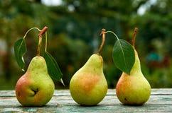 3 зеленых груши с листьями на деревянном зеленом коричневом цвете постарели конец предпосылки текстуры вверх Стоковое Фото