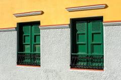 2 зеленых окна с штарками на пестротканой стене Канерейка 10 Стоковое Фото