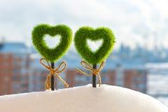 2 зеленых травянистых сердца растут из сугроба Стоковое фото RF