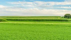 Земледелие в Ланкастере, PA поля амбара фермы страны Амишей стоковая фотография rf