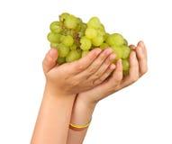 земледелие как виноградное вино подарка Стоковая Фотография RF