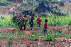 Земледелие северный Вьетнам детского труда стоковые фотографии rf