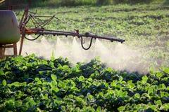 земледелие Стоковые Фотографии RF