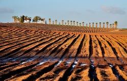 землепашество Стоковое Изображение RF