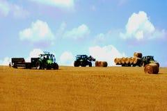 земледелие Стоковое Изображение