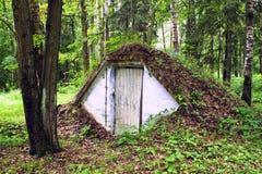 Землянка в глухом летнем лесу/землянка в глубоком лесе лета стоковое фото rf