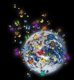 земля бабочки Стоковое Изображение