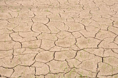 земля безводная Стоковое Фото