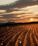 земля вспахала Стоковые Фотографии RF