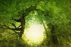земля двери fairy к стоковое изображение rf