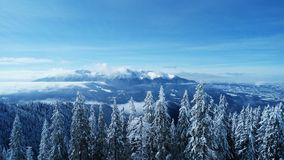 земля дня замерзая отдыхает зима вала снежка Стоковые Фотографии RF