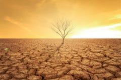 Земля засухи и горячий стоковое изображение rf