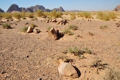 земля захоронения бедуина Стоковые Изображения
