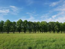 Земля и воздух как свобода Стоковая Фотография RF