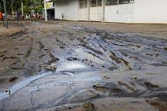 земля мягко влажная Стоковые Фотографии RF