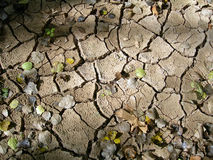 земля осени сухая Стоковое Изображение RF