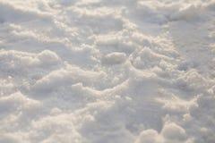 Земля покрытая снегом, загоренная солнечностью после полудня Стоковое Фото