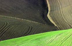 земля предпосылки Стоковое Изображение RF
