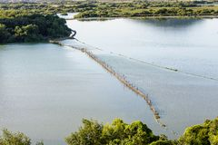 земля птиц в manmade барьере в озере Стоковая Фотография RF