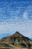 земля пустыни трясет песок Стоковое Изображение RF