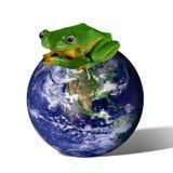 земля сохраняет Стоковая Фотография