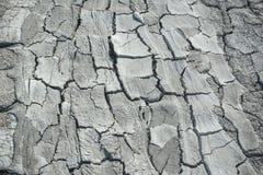 Земля сухая Стоковая Фотография