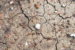 Земля суха и без воды стоковые изображения rf