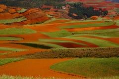 земля цвета Стоковое Изображение RF