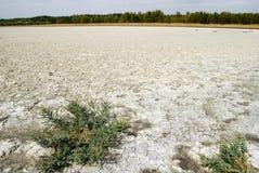 земля saline Стоковая Фотография RF