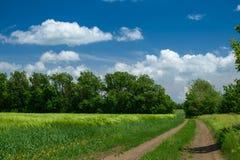 Земная дорога в wheaten поле и красивом пасмурном r стоковая фотография