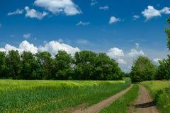 Земная дорога в wheaten поле и красивом пасмурном r стоковые изображения rf