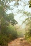 земная дорога Стоковые Изображения RF