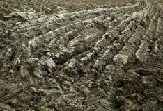 земная текстура Стоковое Фото