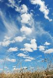 земное небо Стоковое Изображение