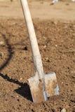 земной лопаткоулавливатель Стоковые Фото