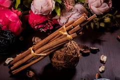 Земной циннамон, ручки циннамона, соединился с подносом с смычком на флористической предпосылке в деревенском стиле селективно Стоковое Изображение