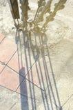 Земные анкеры электрического поляка Стоковое Изображение RF
